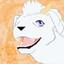 animarelic's avatar
