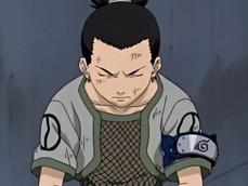 AnimeRaven's picture