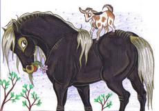 HorseSpirit's picture