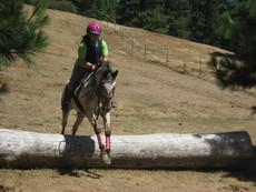 horsecrazy555's picture