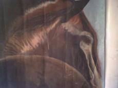bajachick's picture