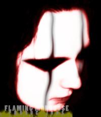 FlamingMongoose's picture